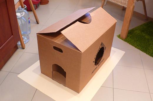 Игрушка из коробки для кота своими руками