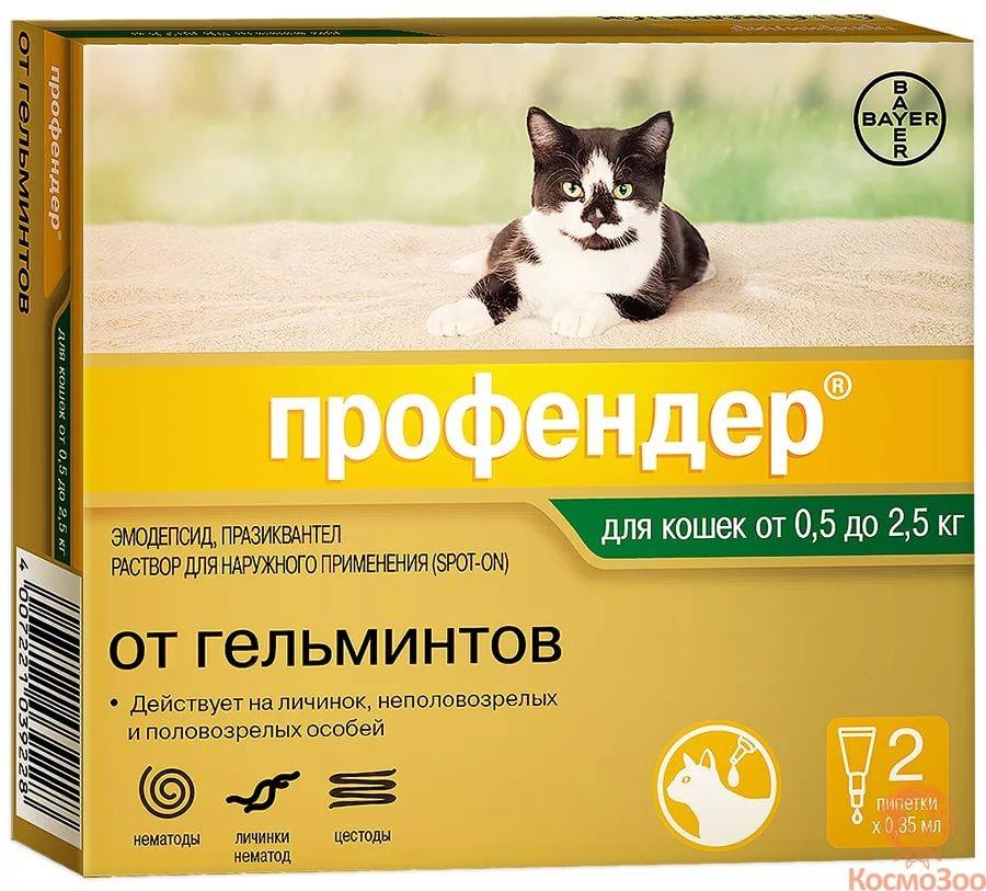Глисты у котов и их цена