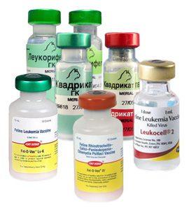 Вакцины для прививок